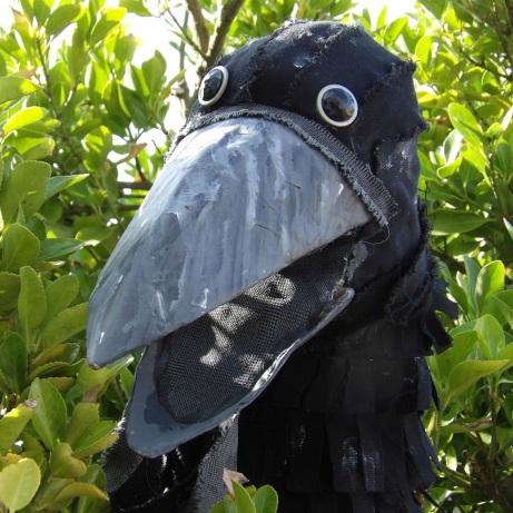 Wild Lives - Crow1